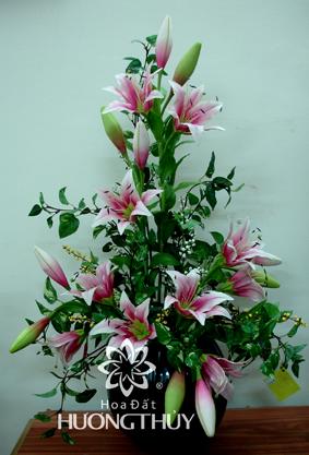 Hoa Đất Hương Thủy-Hoa ly hồng