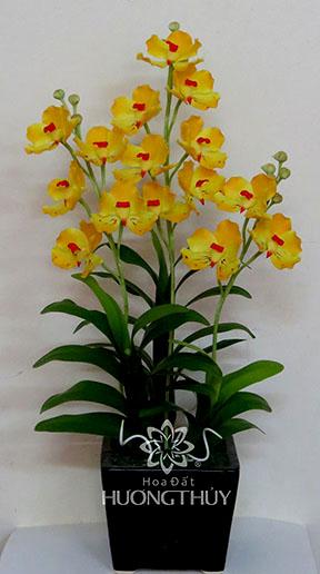 Hoa Đất Hương Thủy-Lan Van-đa vàng 3 cành