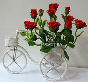 Hoa Đất Hương Thủy-Xe đạp hoa hồng đỏ