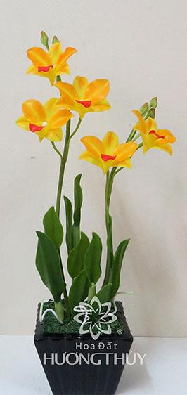 Hoa đất Hương Thủy – Lan Đen-rô vàng size nhỡ Cao 36cm – ngang 17cm – sâu 10cm