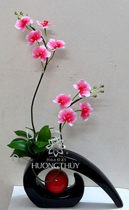 Hoa đất Hương Thủy – Hồ điệp hồng cắm bình mái tóc