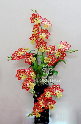 Hoa đất Hương Thủy – Lan Vũ nữ Ô – đôn tô màu vàng đỏ bình 21 bông