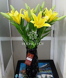 Hoa đất Hương Thủy – Bình hoa Ly vàng