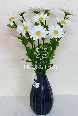 Hoa đất Hương Thủy – Bình hoa cúc trắng