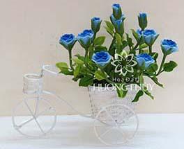 Hoa đất Hương Thủy – Xe đạp hoa hồng xanh
