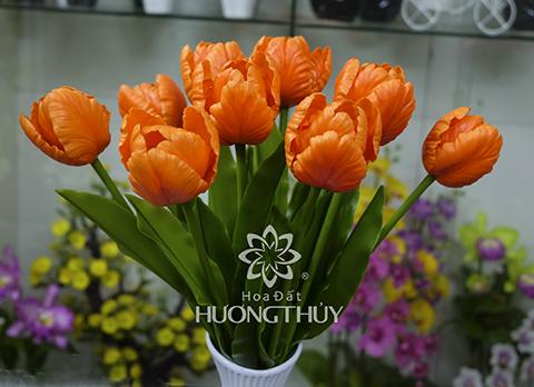 Hoa đất Hương Thủy – Hoa Tulip màu cam size lớn