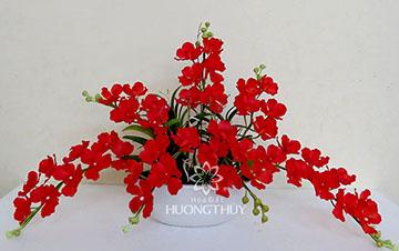 Hoa Đất Hương Thủy-Vanđa đỏ