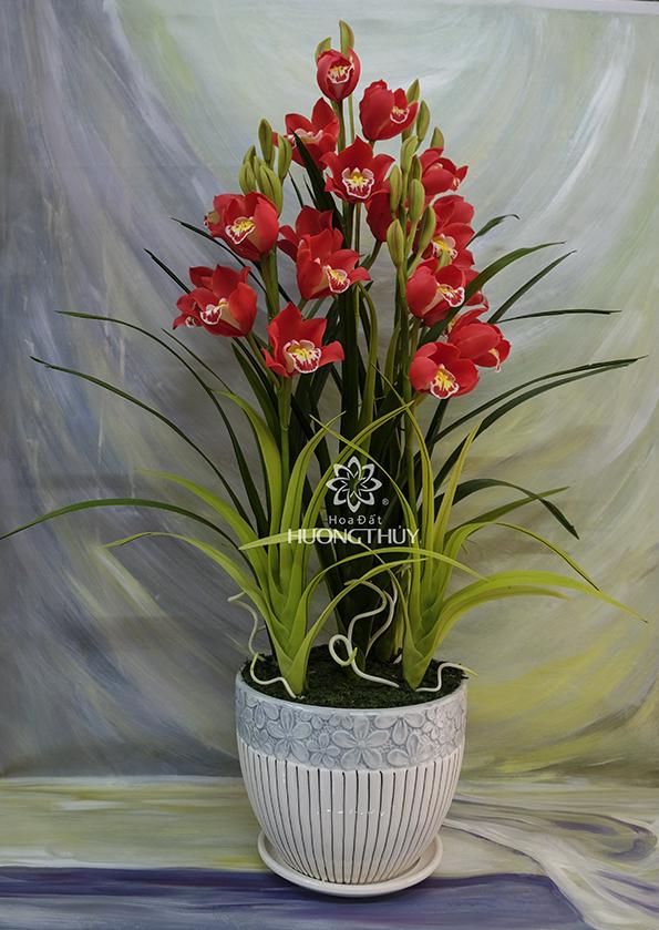 Hoa đất Hương Thủy – Hoa Địa lan đỏ (Bình 21 bông)