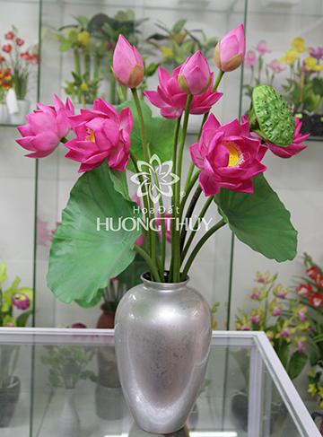 Hoa đất Hương Thủy – Hoa sen bình 5 bông 3 nụ, 1 đài