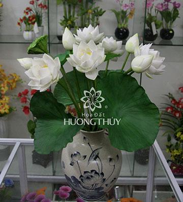 Hoa đất Hương Thủy – Hoa sen trắng bình 5 bông 3 nụ
