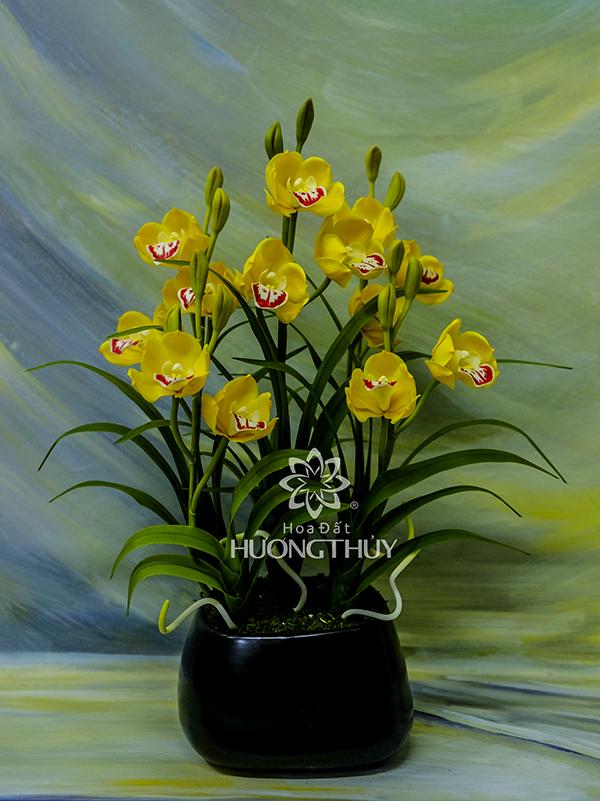 Địa lan nhỏ 5 cành màu vàng: Cao 40cm, ngang 23cm, sâu 13cm