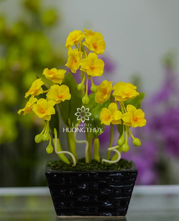 Hoa Hoàng lan nhỏ 3 chùm: cao 25cm -ngang 18cm