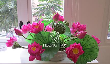 Đĩa hoa sen: kích thước có thể từ 35 x 60cm hoặc 40x80cm.v.v…